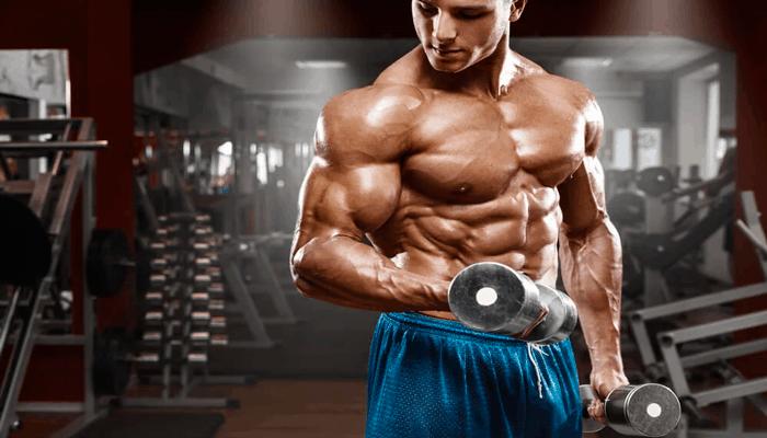 Musculação é uma das atividades físicas que mais queimam calorias.