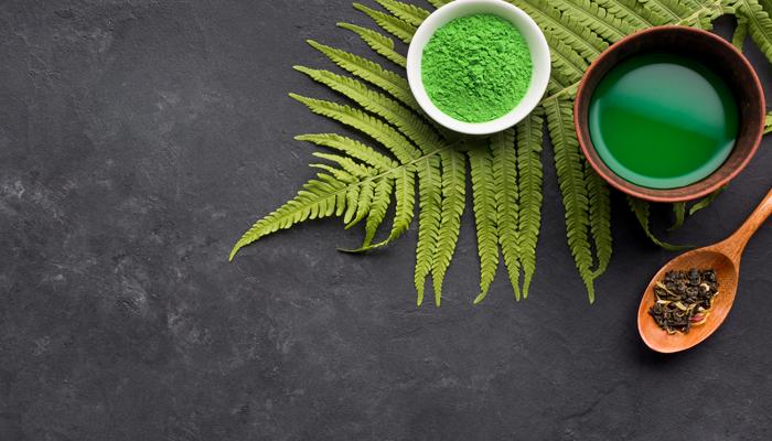 Chá verde em pó, chá verde em sua forma natural(planta) e líquido em uma tigela.