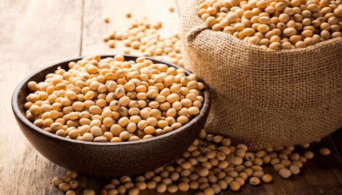 Soja dentro de uma vasilha de madeira. A soja é uma excelente fonte de proteína vegetal, ideal para vegetarianos.