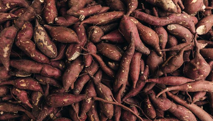 A batata doce é uma das alternativas mais populares e melhores fontes de carboidratos.